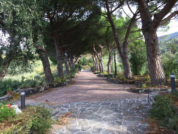 cabana-driveway